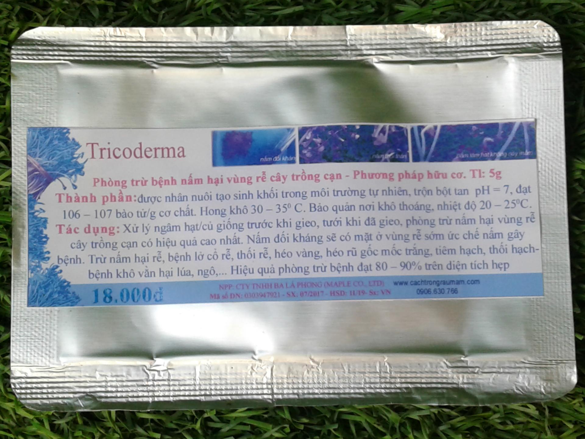 Trichoderma có chứa các chủng nấm có lợi giúp ức chế rệp sáp vùng rễ
